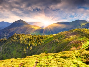Colorful summer landscape in the mountains