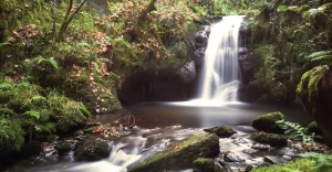 cropped-river-waterfall1.jpg