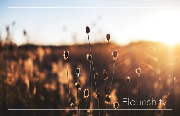 flourishlogo7